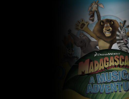 MADAGASCARA MUSICAL ADVENTURE12 DicembreTeatro BrancaccioRoma