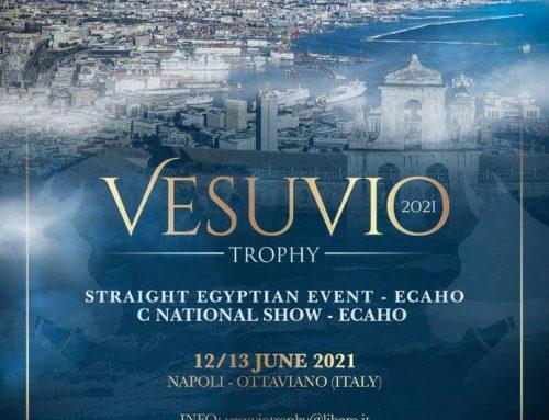 VESUVIO TROPHY12-13 GIUGNOOTTAVIANO (NAPOLI)